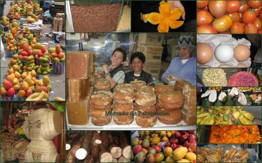 Mercado de Palo Quemao